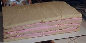 cake layers for dolphin cake