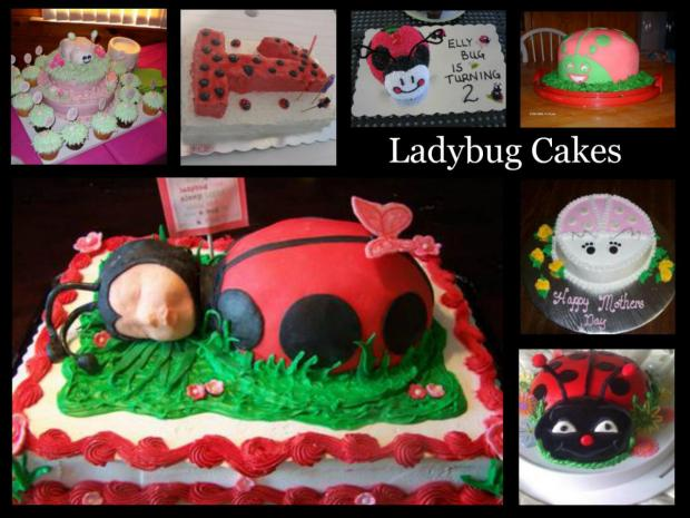 ladybug cakes collection