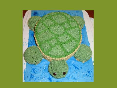 swimming turtle cake