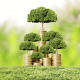 growing cake business online